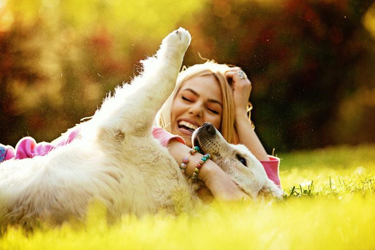 7 razões pelas quais os cães nos tornam mais felizes