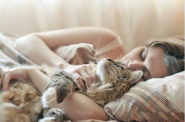 Dormir com o gato