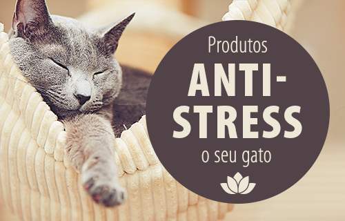 Antistress_Cat