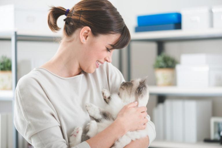 10 sinais que o seu gato gosta de si