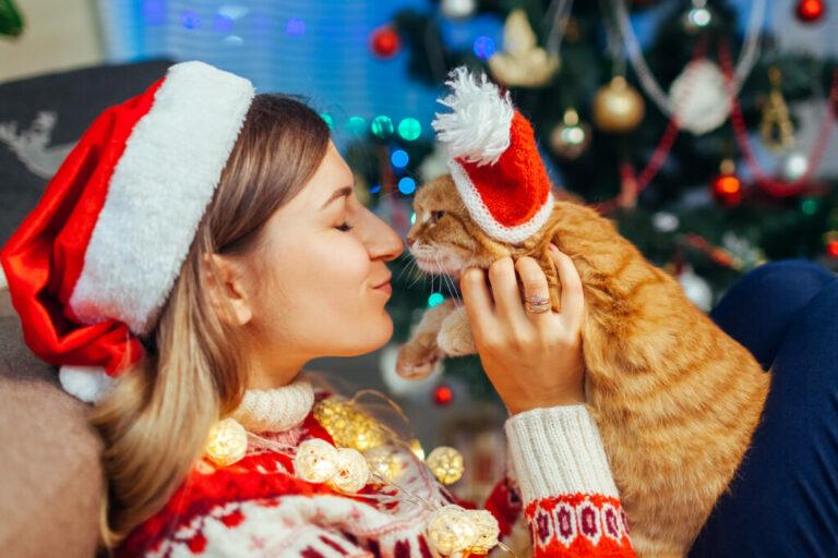 Lista de prendas de natal para gatos