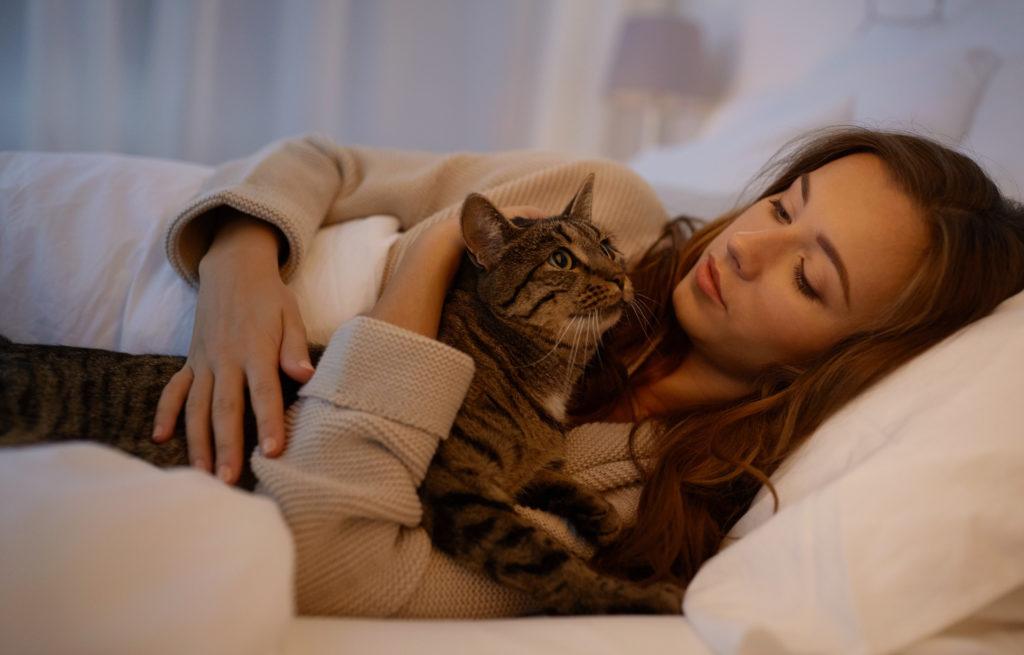 Gato com a dona na cama. É preciso saber por que razão um gato mia de noite para alterar este comportamento