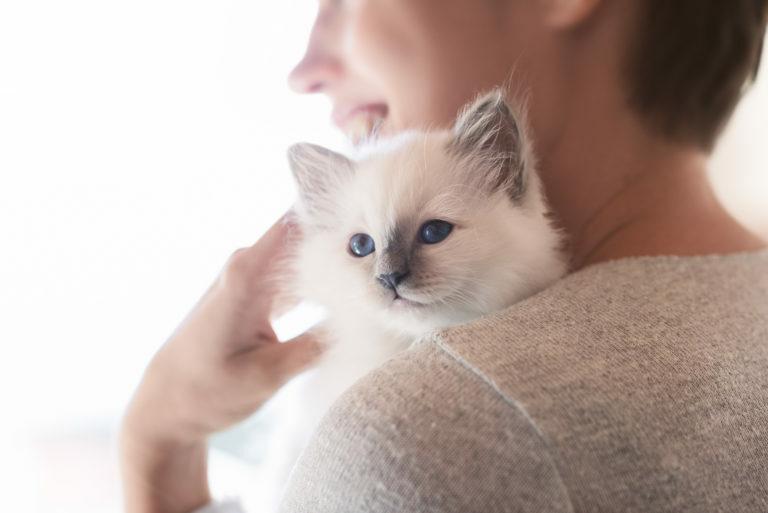 mulher a abraçar gatinho