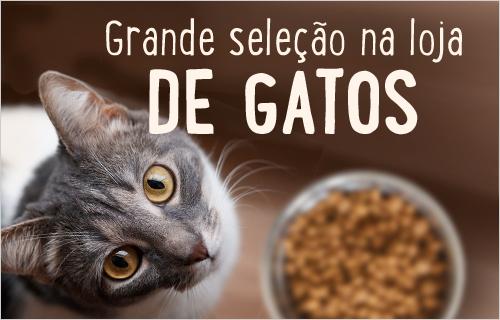 shop_gato