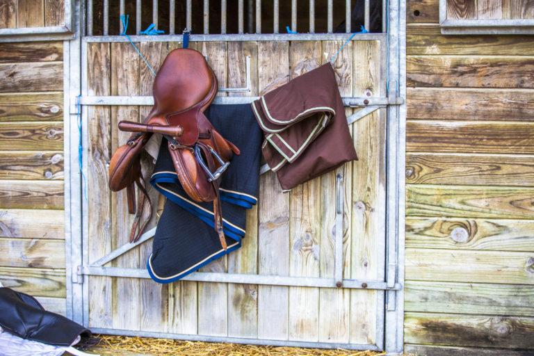 acessorios para cavalos