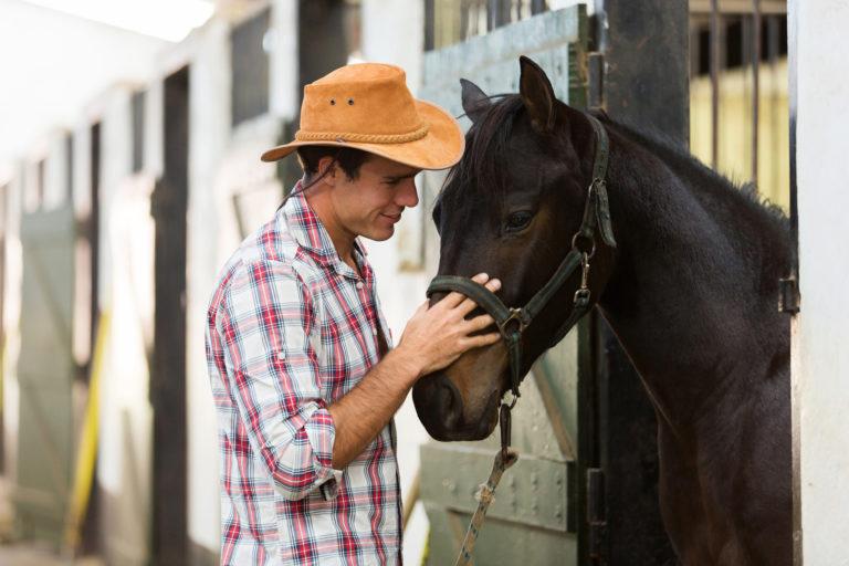 encantador_de_cavalos