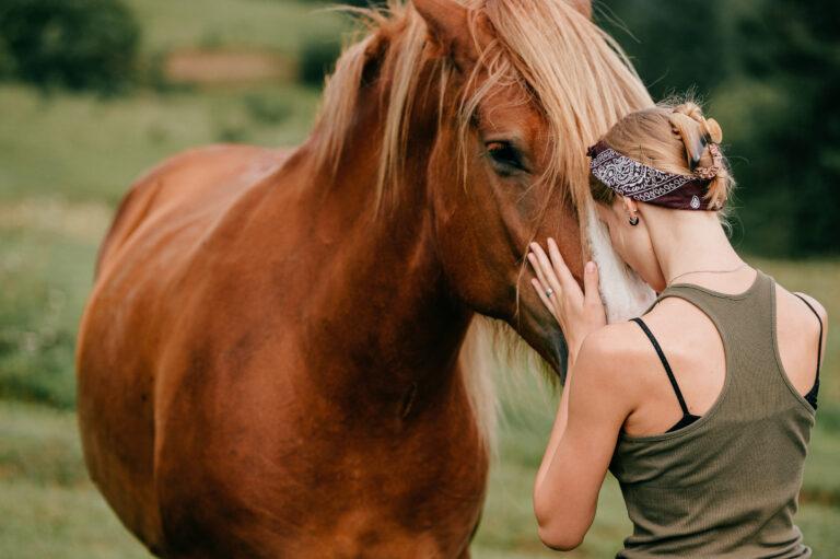 linguagem dos cavalos