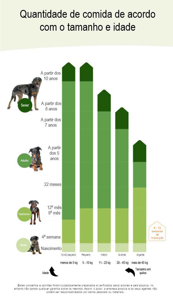 alterar a alimentação dos cães: gráfico com relação idade e tamanho da raça