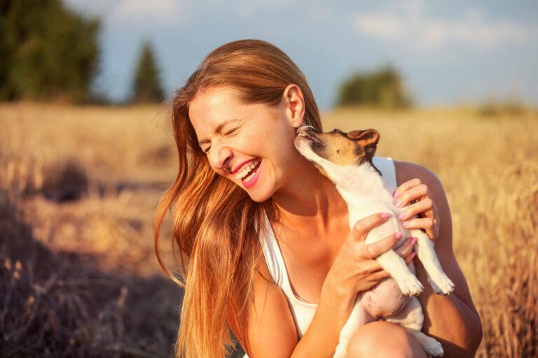 Porque os cães lambem os donos: uma demonstração de afeto