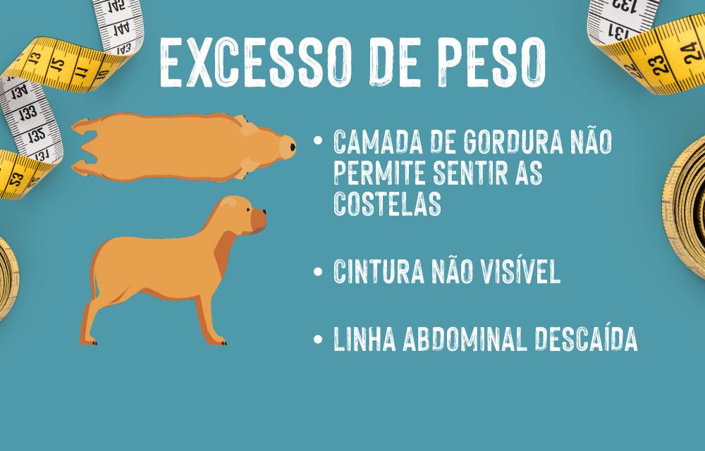 Excesso de peso e obesidade em cães: Identificar o excesso de peso