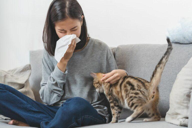 Fotografia de uma senhora com um gato: os espirros e nariz entupido são sintomas de alergia a gatos